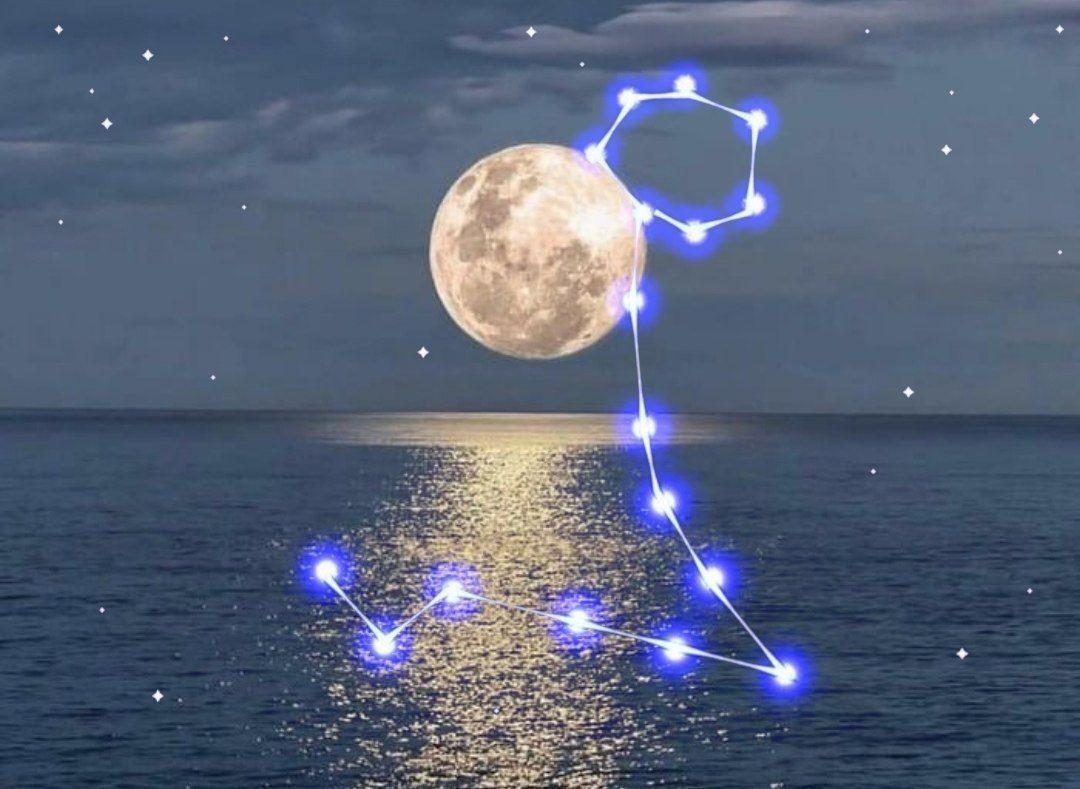 ماه کامل نشان ماهی، عشق و حقیقت